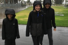 Storm in Tauranga