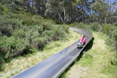 Jaida on the Thredbo bobsled