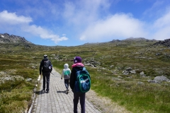 Hiking at the top of Thredbo mountain