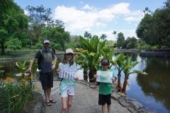 Mount Coot tha botanical gardens