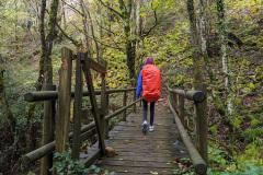 Camino-day-1-wooden-bridge