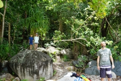 Naked beach jungle