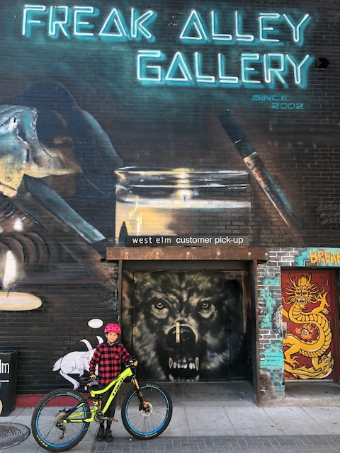 Boise-Freak-Alley-gallery