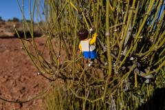 Canyonlands-lego-person