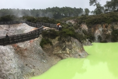 Rotorua sulfur lake