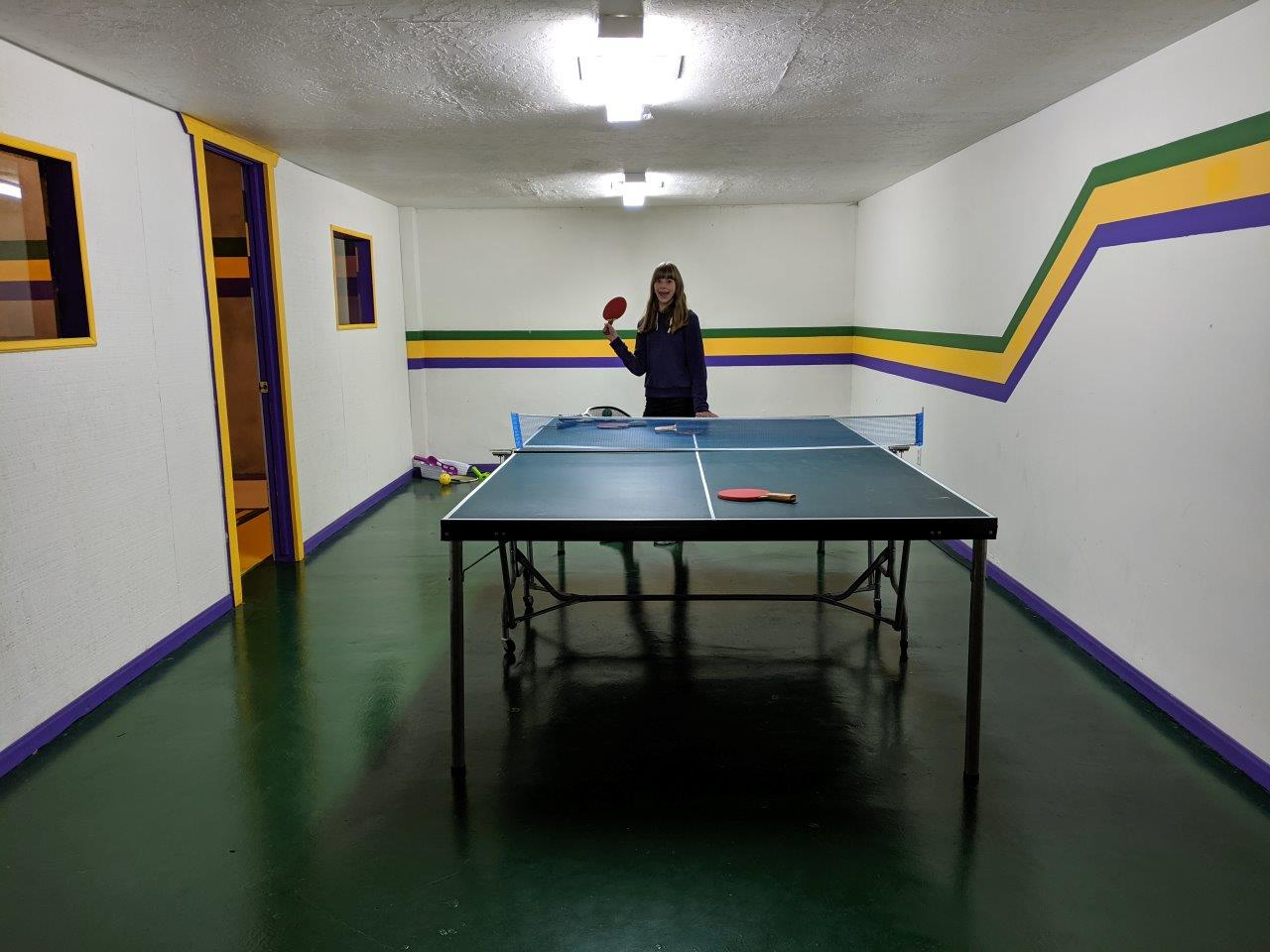 Salt-Lake-City-ping-pong-Airbnb