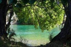 Clutha river swim spot