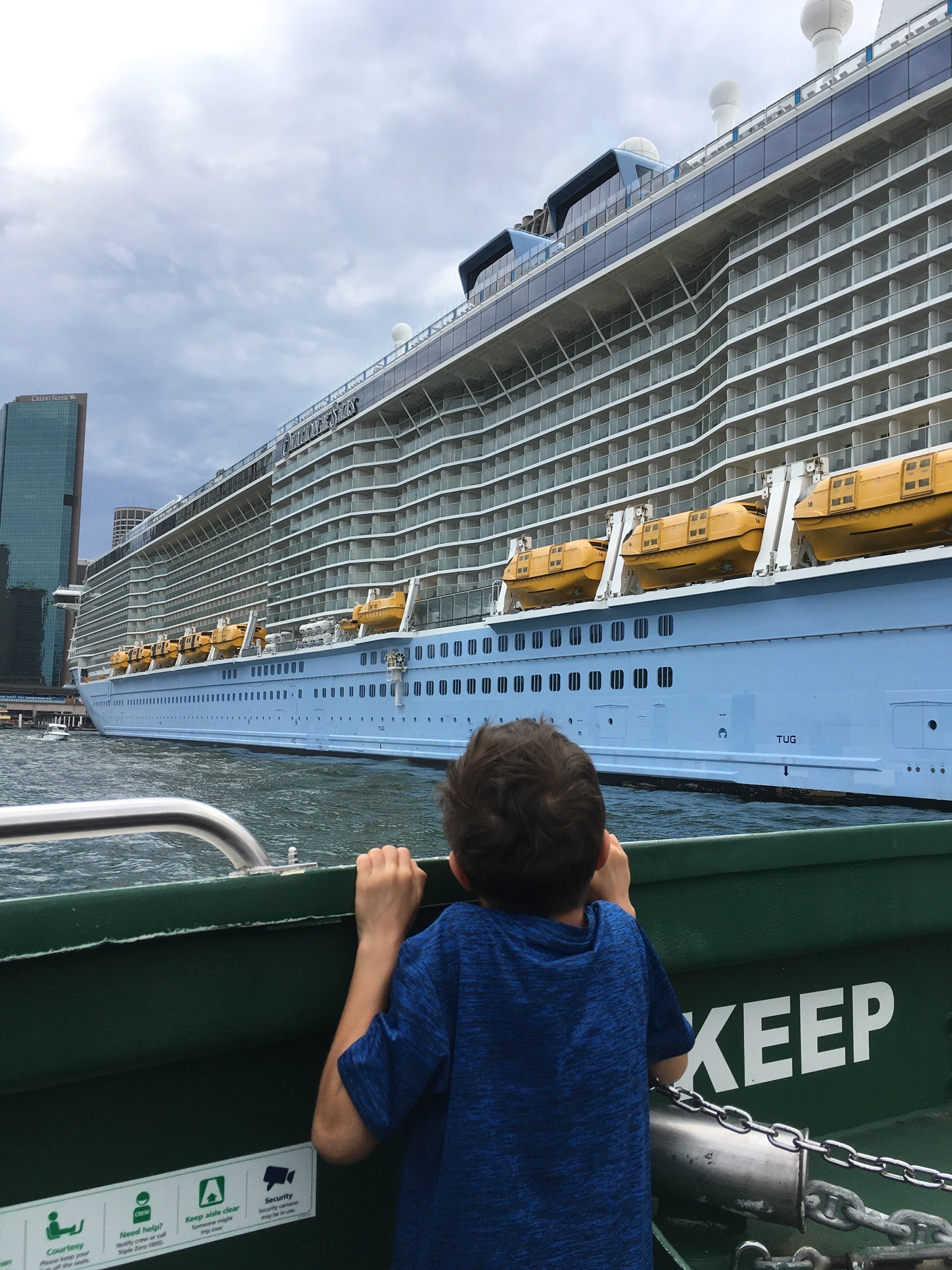 Giant cruise ship in Sydney harbour