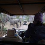 Kyla watching elephants